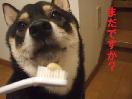 blog346.jpg