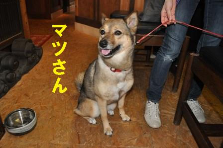 blog364.jpg