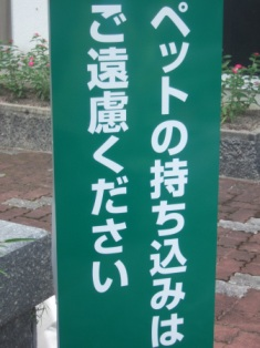 blog427.jpg