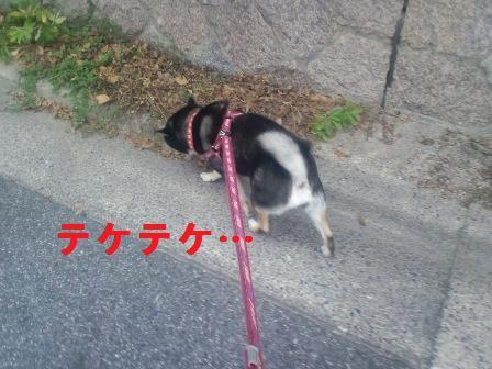 blog544.jpg