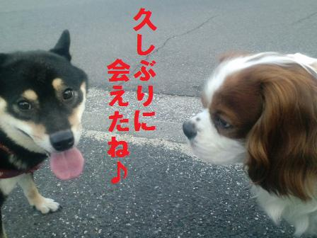 blog580.jpg