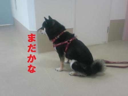 blog587.jpg