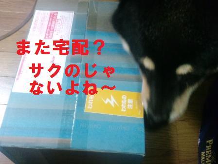 blog605.jpg