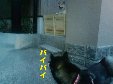 blog648.jpg