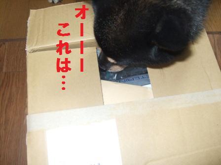 blog659.jpg
