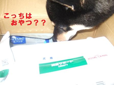 blog662.jpg
