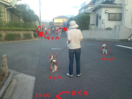 blog760.jpg