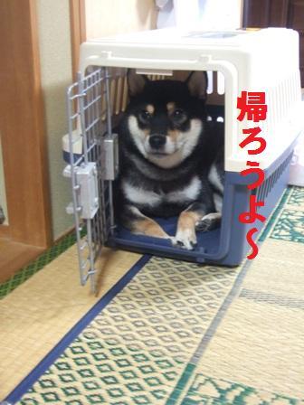 blog777.jpg