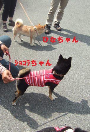 blog814.jpg