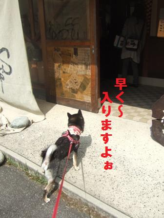 blog815.jpg