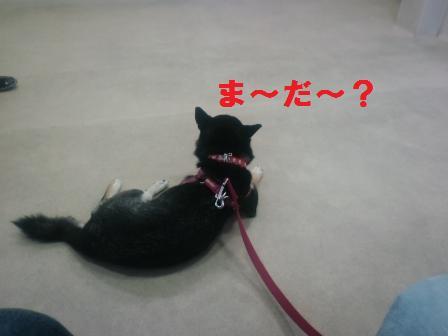 blog899.jpg