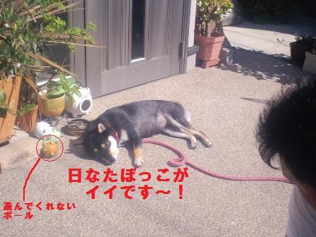 blog904.jpg