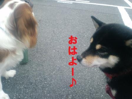 blog989.jpg