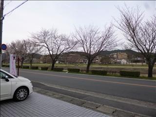 2013-03-30事務所前_0
