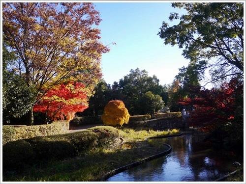 芸術の森公園27