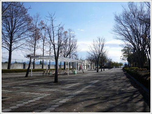 敷島公園14