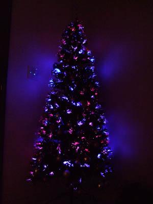 tree2.jpg