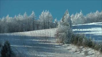 スナップショット 3 (2011-12-12 7-24)