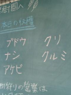 20111010134621.jpg