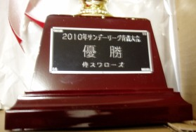 P10100192010SANNDE-RI-GUYUUSYOU.jpg