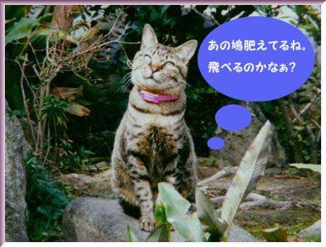 cyobo4_20130501210638.jpg