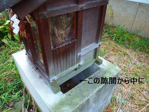 niwa92_20121201180509.jpg