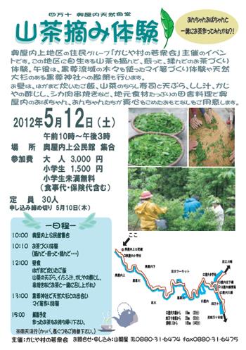 山茶摘み体験2012年