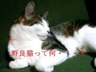 100613_0848_01.jpg