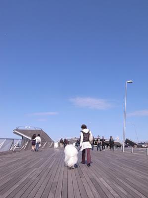 大さん橋1