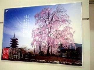 品川駅(その2)