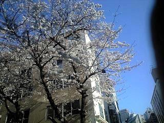 六本木(その2)