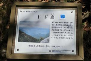 3IMG_5255.jpg