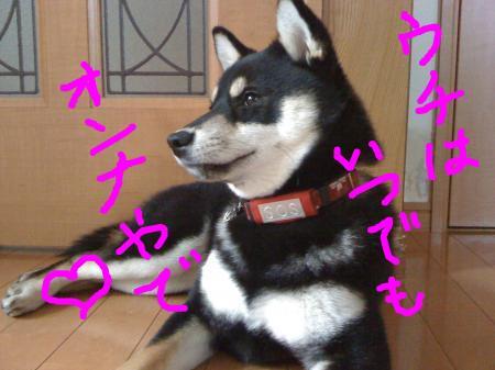 snap_sapphire16_201036224631.jpg