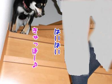 snap_sapphire16_201075231424.jpg
