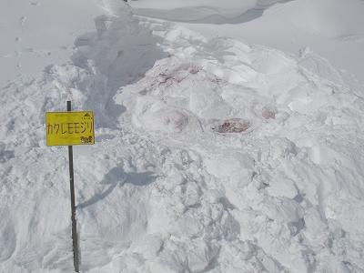 H24雪像記録写真パノ1山頂