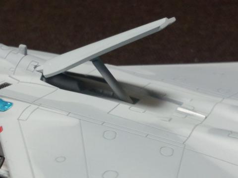 FJ310619.jpg