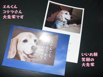 001_20110524201448.jpg