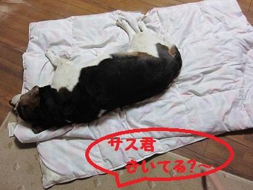 001_20110704195136.jpg