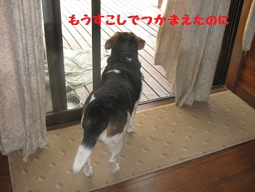 001_20111015091525.jpg