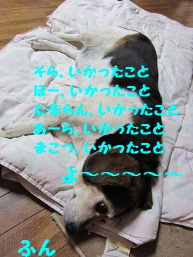 002_20110705195406.jpg