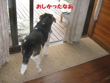 002_20111015091513.jpg