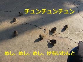 002_20120129170244.jpg