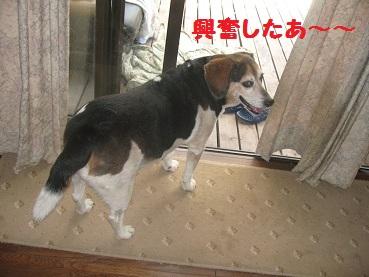 003_20111015091547.jpg