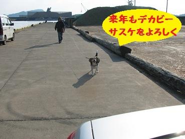 003_20111230213758.jpg