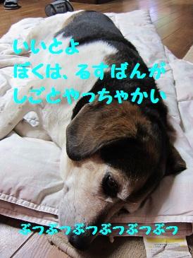 004_20110705195418.jpg