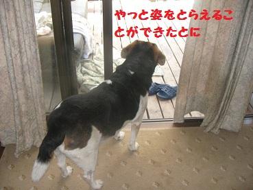 004_20111015091537.jpg