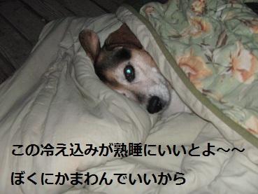 004_20120203214055.jpg
