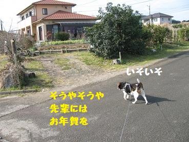 007_20120104203747.jpg