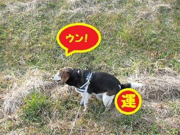 008_20120102201515.jpg