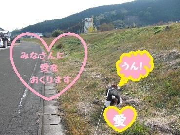 010_20120104203419.jpg